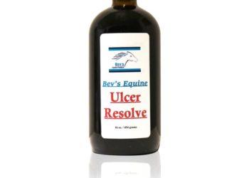 Bev's Equine Ulcer Resolve